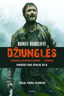 Džiunglės / Jungle