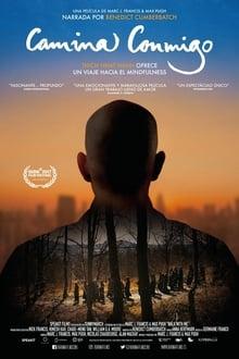 Camina conmigo (2017)