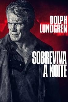 O Enigma do Horizonte - Poster