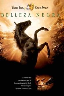 Un caballo llamado Furia (1994)