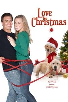 De l'amour pour Noël streaming