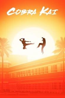 Cobra Kai 1ª Temporada Completa Torrent (2018) Dual Áudio 5.1 / Dublado WEB-DL 720p e 1080p – Download