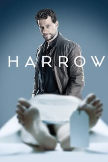 Harrow – Todas as Temporadas – Dublado / Legendado