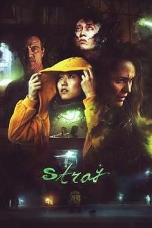 Poster Stray Torrent