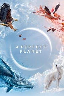 Assistir A Perfect Planet – Todas as Temporadas – Legendado