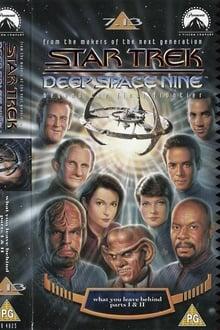 Star Trek: Deep Space Nine: What You Leave Behind
