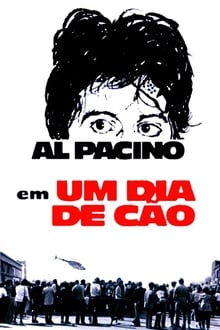 Um Dia de Cão Torrent (1975) Dual Áudio / Dublado BluRay 1080p – Download