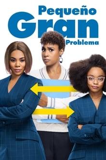 Pequeño gran problema (2019)