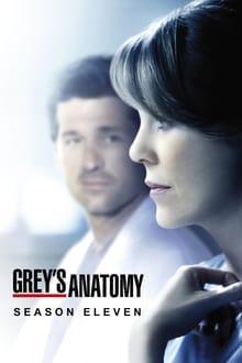 Grey's Anatomy Saison 11