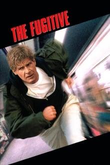 The Fugitive 1993