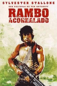 Rambo (Acorralado)