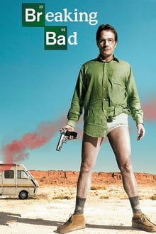 Breaking Bad Saison 1 Streaming VF