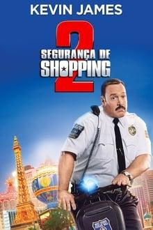 Segurança de Shopping 2 Dublado
