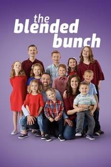 The Blended Bunch 1ª Temporada Completa