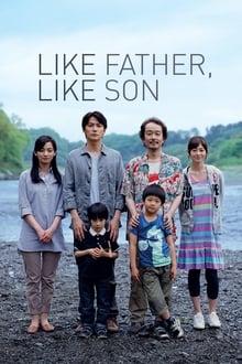 De tal padre, tal hijo (2013