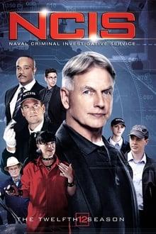NCIS: Enquêtes spéciales Saison 12