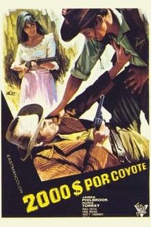 Django, a Bullet for You