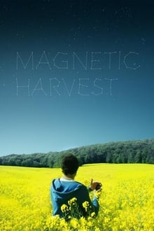 Magnetic Harvest 2019