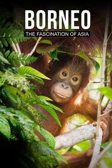 Borneo: The Fascination of Asia