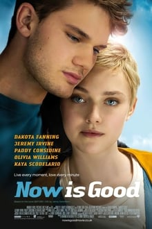 Now Is Good (2012) English (Eng Subs) x264 Bluray 480p [317MB] | 720p [800MB] mkv