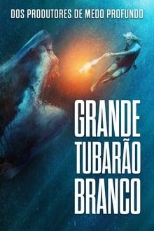 Grande Tubarão Branco Torrent (2021) Dual Áudio 5.1 / Dublado BluRay 1080p – Download