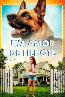 Um Amor de Filhote Torrent (2020) Dual Áudio 5.1 WEB-DL 720p e 1080p Dublado Download