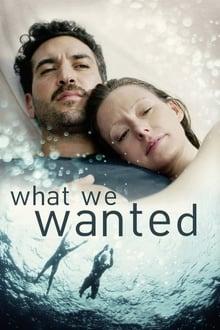 What We Wanted - Ce ne doream (2020)