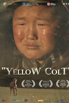 Yellow Colt