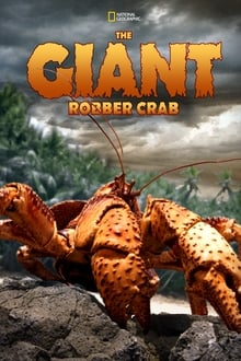 The Giant Robber Crab 2019
