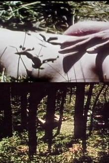 Short Films 1975 #9