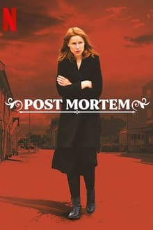Post Mortem: Ninguém Morre em Skarnes 1ª Temporada Completa Torrent (2021) Dual Áudio / Dublado WEB-DL 720p Download