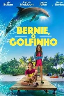 Bernie, o Golfinho Torrent (BluRay) 720p e 1080p Dual Áudio – Download