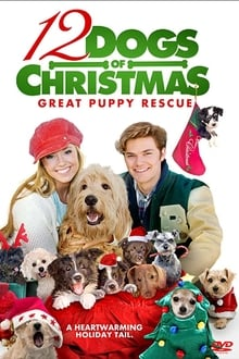 12 chiens pour Noël 2