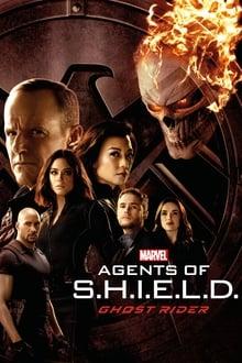 Marvel's Agents of S.H.I.E.L.D. 4ª Temporada (2017) Dual Áudio – Torrent Download