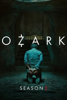 Ozark 3ª Temporada Completa Torrent (2020) Dual Áudio 5.1 WEB-DL 720p e 1080p Legendado Download