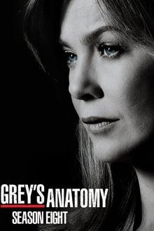 Grey's Anatomy Saison 8 streaming