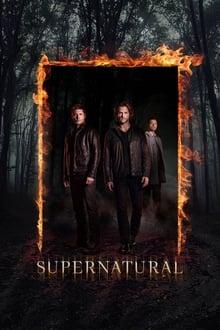 Supernatural 12ª Temporada (2016) Torrent – WEB-DL 720p Dublado / Dual Áudio Download