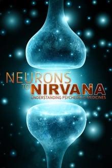 Neurons to Nirvana 2013