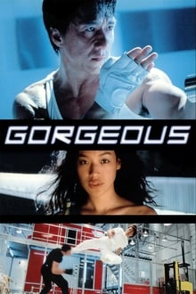 Gorgeous (1999) Dual Audio Hindi-Chinese x264 Bluray 480p [397MB] | 720p [943MB] mkv