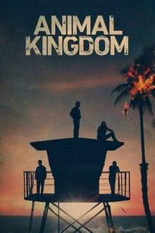 Animal Kingdom – Todas as Temporadas – Dublado / Legendado