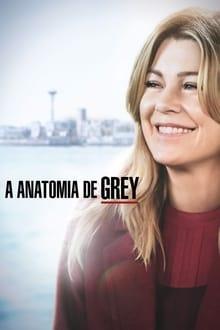 Assistir Grey's Anatomy – Todas as Temporadas – Dublado / Legendado