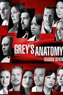 Grey's Anatomy Saison 7 streaming