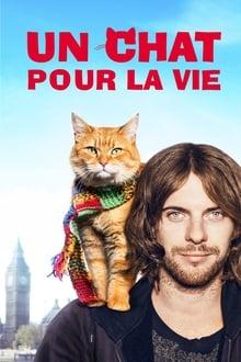 Film Un chat pour la vie Streaming Complet - Quand il adopte un chat de gouttière roux et le fait participer à son spectacle de rue,...