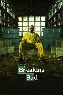 Breaking Bad 5ª Temporada Completa