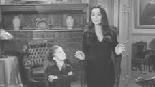 Feud in the Addams Family