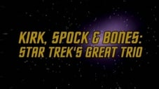 Kirk, Spock & Bones - Star Trek's Great Trio