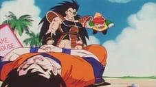 Dragon Ball Z (Temporada 1)