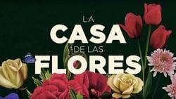 Posters Serie La casa de las flores en linea