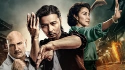Vision de Master Z: The Ip Man Legacy pelicula online