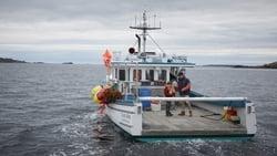 Nuevo trailer online Pelicula Manchester frente al mar